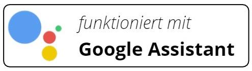 Elgato Google Assistant